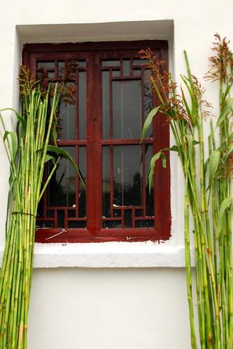 bamboo window