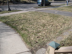 Front yard - before