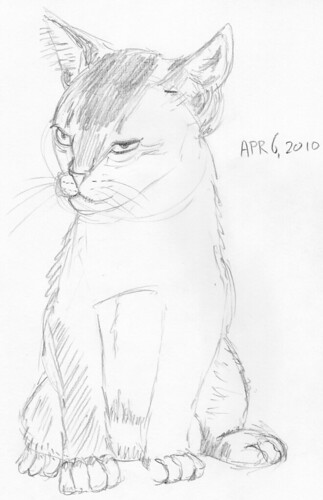 Cute kitten, drawn live on March 6, 2010