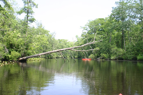 Paddling Perquiman County Blueway - Vicky on River (by Ryan Somma)