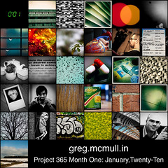 Project 365: January Mosaic