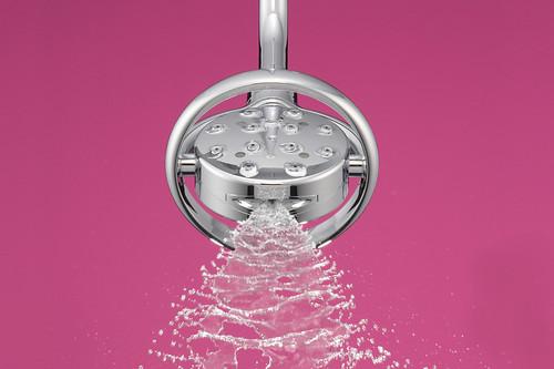 Flipside™ Showerhead