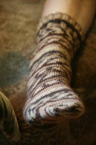 Ollie's Christmas Socks