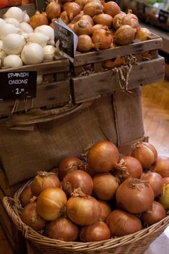 fallon & byrne onions