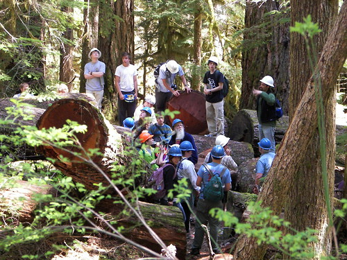 Albion College students: Old Growth Trail