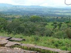 Malawi 94