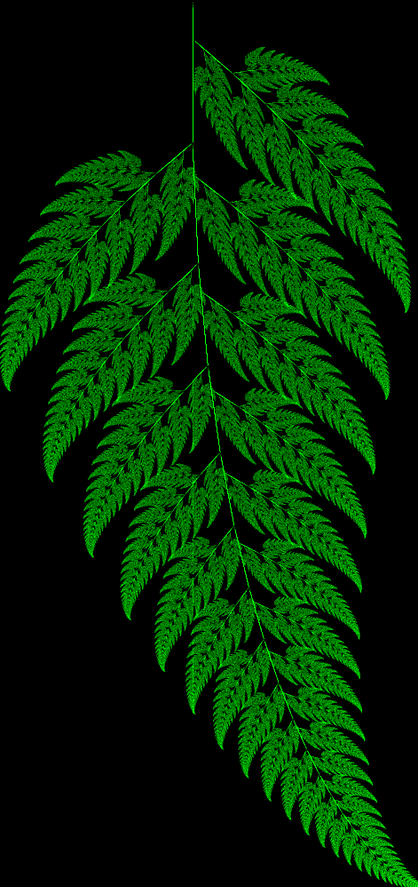 Computer Generated Fern
