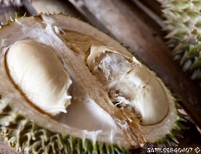 2010.06.19 Bao Seng Durian Buffet @ Penang-10