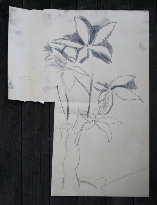 Cut Paper Plant