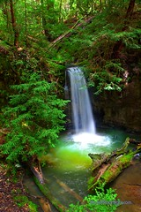 Sempervirens Waterfall