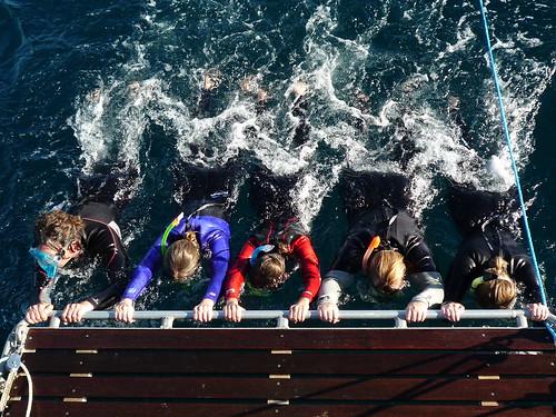 Boot zieht uns fuer Delfinschwimmen durchs Wasser