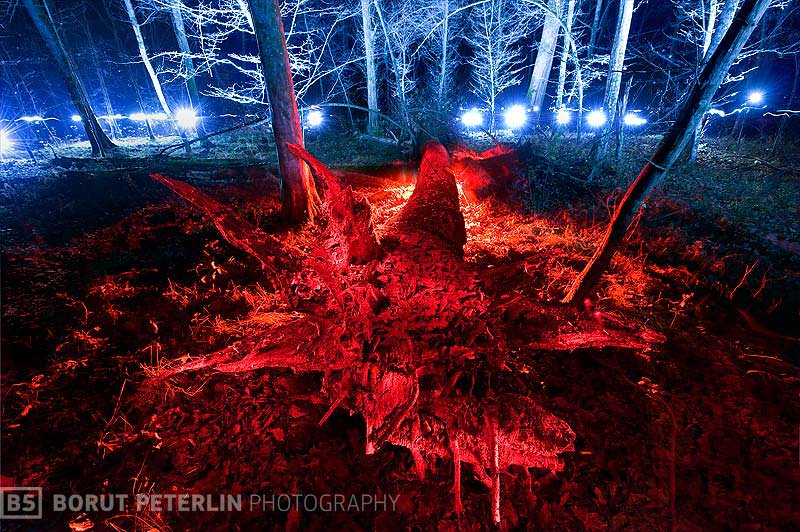 bajke-krakovski-borutpeterlin.com_20101105_1629