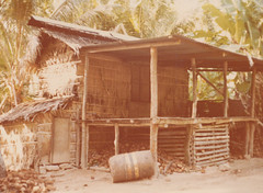 Copra drying house, Yap