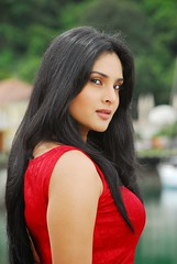 Indian Actress Ramya Hot Sexy Images Set-2  (82)