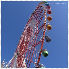 b-20100119_131238.jpg