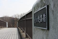 もりの連絡橋(At Shikinomori park, Japan)