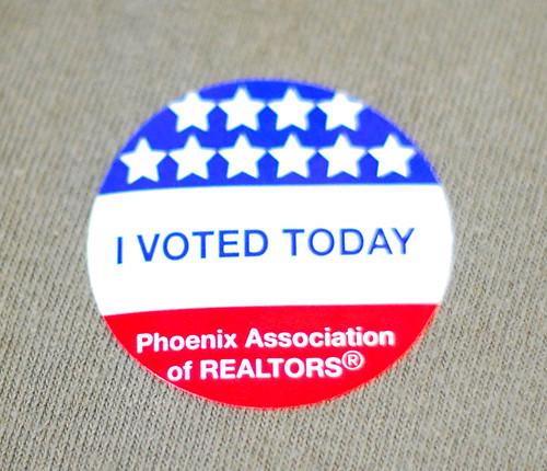 139/365 i voted