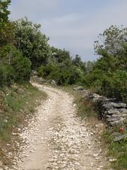 Chemin des Plages