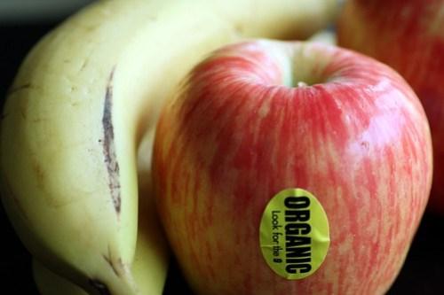 i like to eat eat apples and bananas