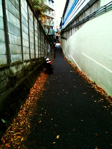 the way of the alley