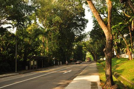 Tanglin Road