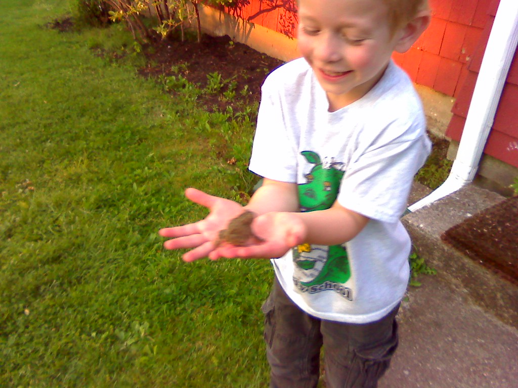 Max caught a frog!