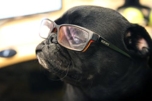 eegor_glasses