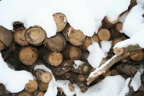 Snowy Log Rounds