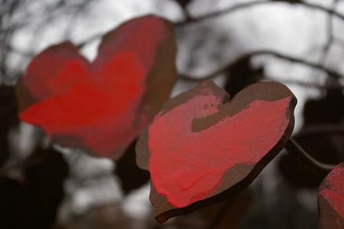 dual hearts