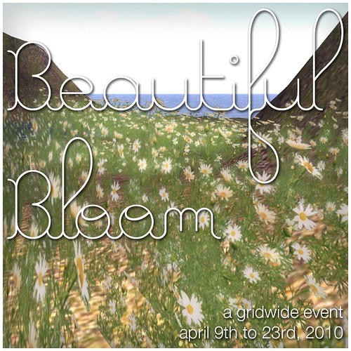 Beautiful Bloom is here!