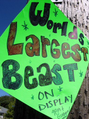 World's Largest Beast