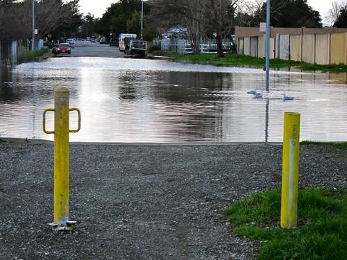 Flooded Cul-de-Sac, East Palo Alto