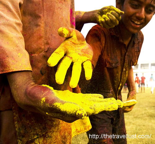 Holi Festival 2010