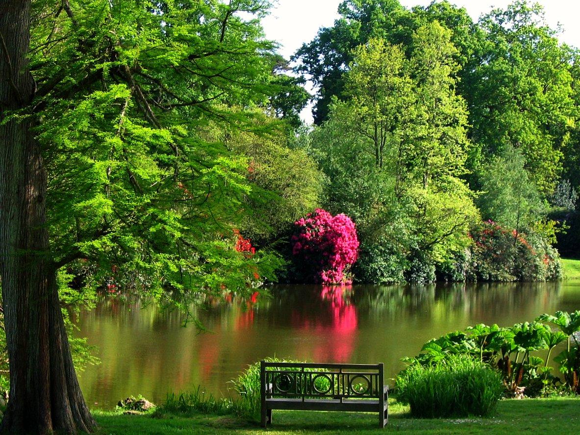 Sheffield Park, Foto di UGArdener