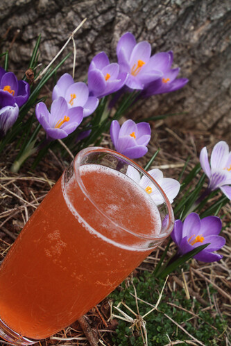 Crocus Cocktail