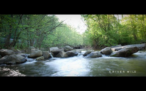 river-7396