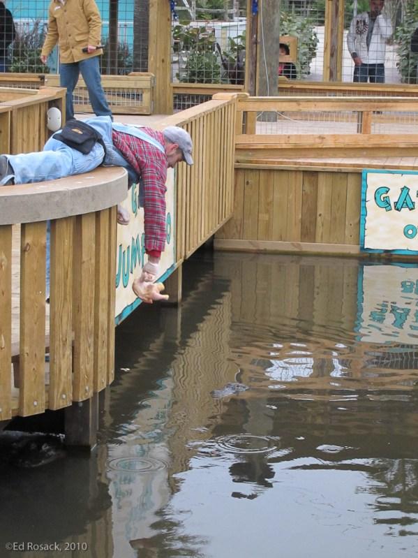 The gator jumparoo at Gatorland
