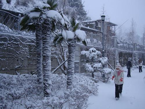 Schnee III