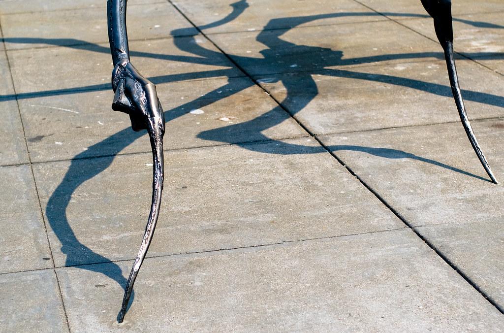 eight-foot-spider