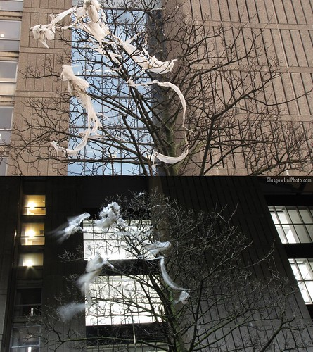 Ghosts In The Trees (Day & Night)