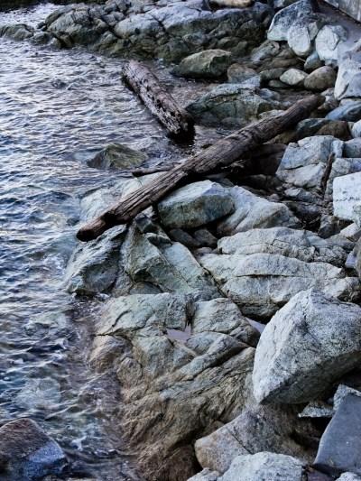 Sidney Shoreline 1