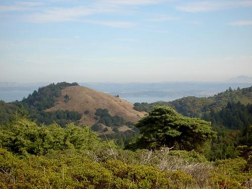 Marin - Kent Trail