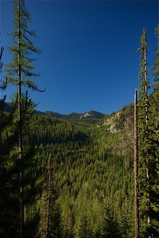Cabin Lake trail scene