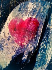 All Broken-Hearted