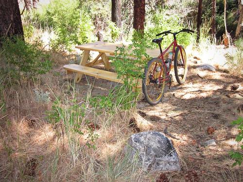 Ash Canyon Picnic Table