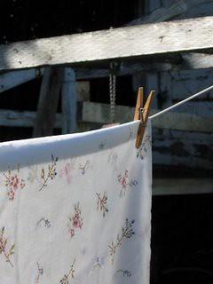 clotheslineRidgely.jpg