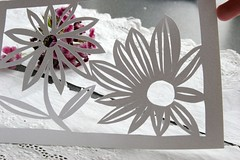 First attempt at papercutting