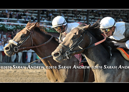 Afleet Express outgames Fly Down to win the 2010 Travers Stakes