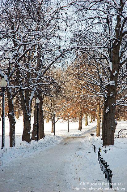 Boston Common波士頓公園07.JPG