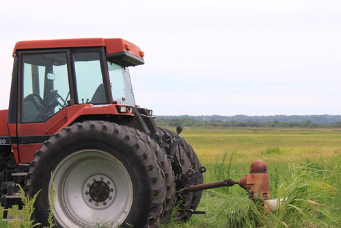 rice field and tractor